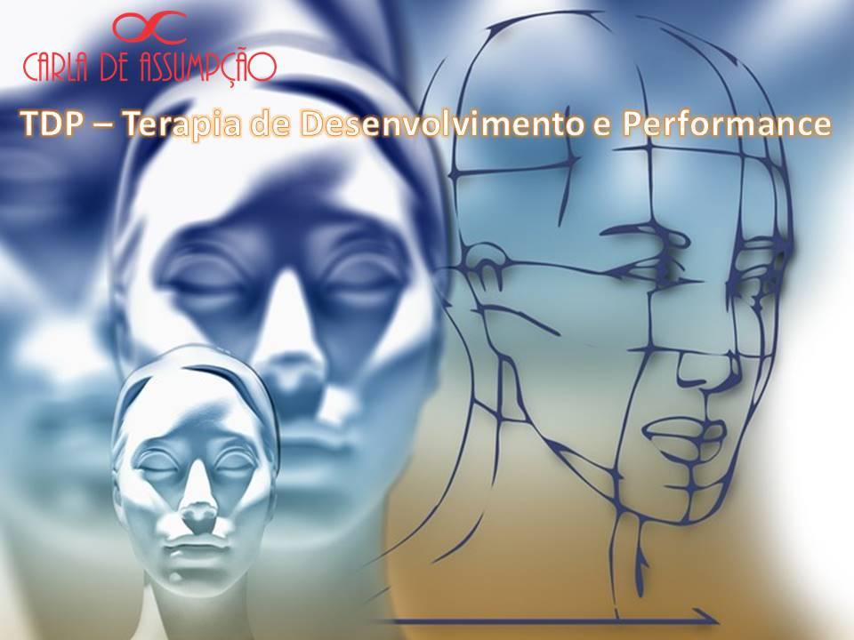 TDP (Terapia de Desenvolvimento e Performance)